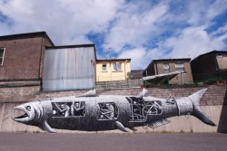 Phlegm's Fish Painting In Ireland.