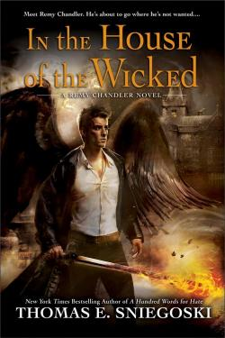 Luke Guldan, romance hero,on the cover of In the House of the Wicked by Remy Chandler.
