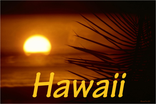Koolio ~ Hawaiian sunset