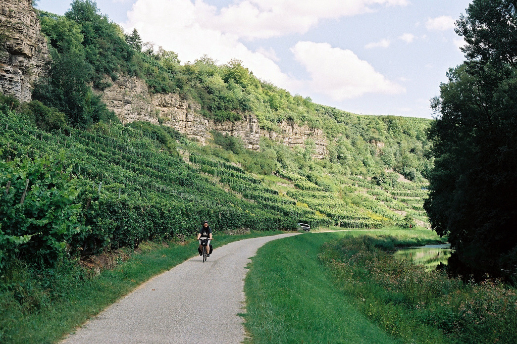 Weinberge am Neckar (by glueckspilzz)