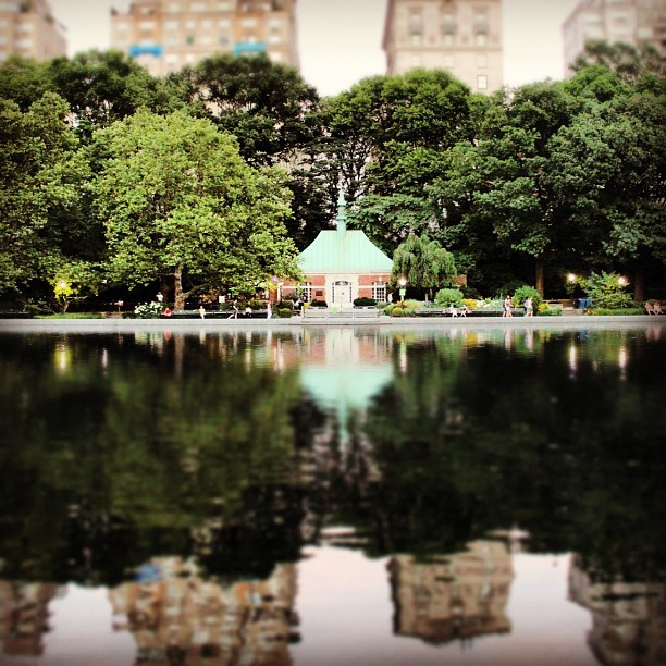 #green #trees #water #reflection #newyork #nyc #webstagram #instagram #instahub #instaddict #photooftheday #picoftheday #follow #shoutout #followme #skyline #centralpark #architecture #pond #pool #park #summer #evening (Taken with Instagram at Central Park)