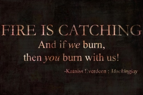 x0xcheerx0x:  If we burn, you burn with us.