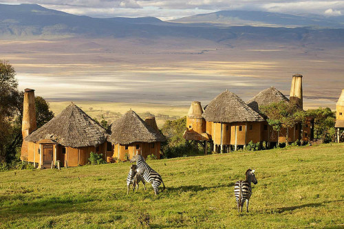 visitheworld:  Zebras at Ngorongoro Crater Lodge, Tanzania (by Brady Welsh).