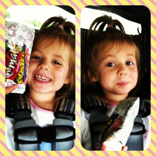 Ava's first Animal Crackers w/ Icing & Sprinkles! Road trip bribery ;-) (Taken with Instagram)