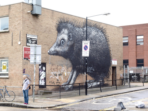 stencils:  Roa  (by Claudelondon)