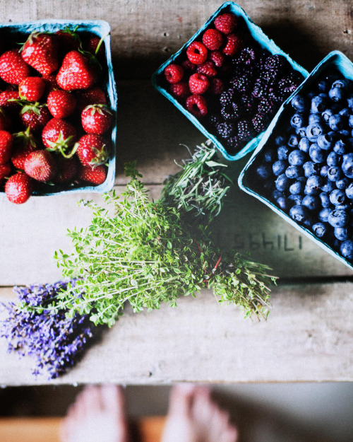 underthesamesofa:  today's finds from the market (by TheSophisticatedGourmet)