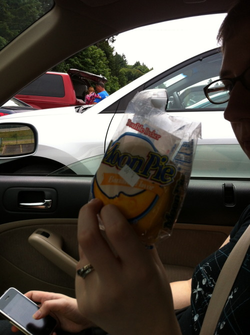 And that's the last of the Very Short Road Trip picspam. Banana Moon Pies have roughly the road-trip ritual status of communion wafers.