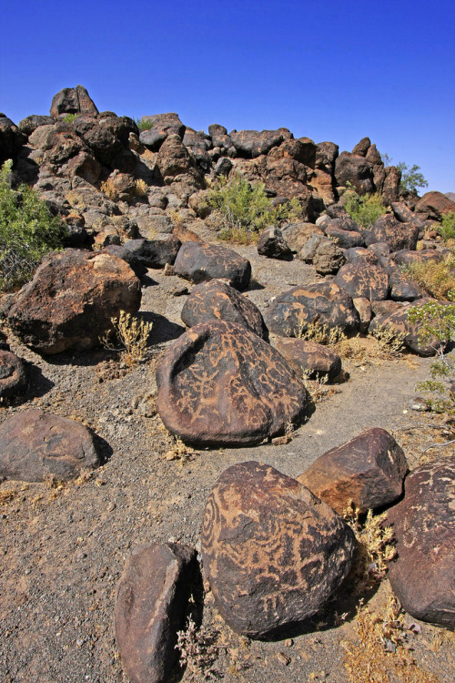Painted Rock Petroglyph Site, Arizona (by Buck—Fever)