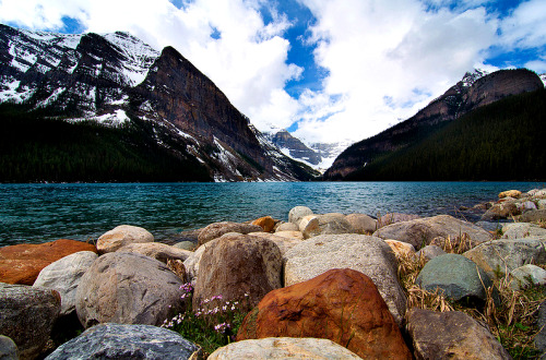 bmrgould:  Lake Louise (By le cabri)