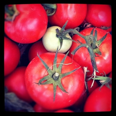 Trouvez l'intrus #tomatoes #green #red (Taken with Instagram)