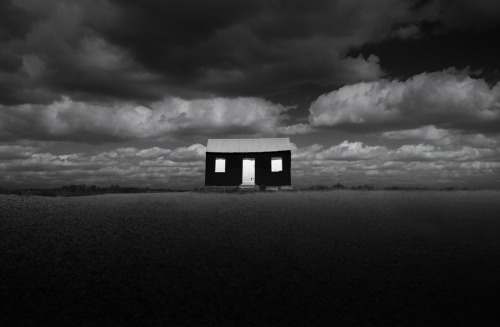 tripudios:  CHRIS FRIEL