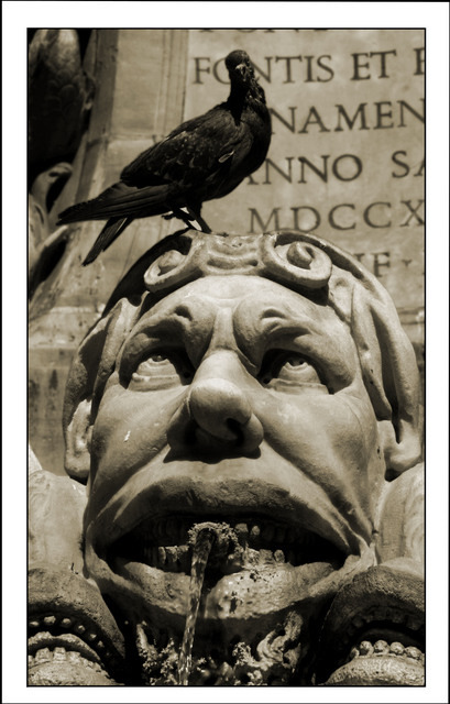 Made this Photo in Rome, Italy. This fountain is next to the Pantheon. I looked around and found this information: Fontana del Pantheon (1575) designed by Giacomo della Porta and built by Leonardo Sormani.  .   Loved the scenery with the head looking at the pigeon!
