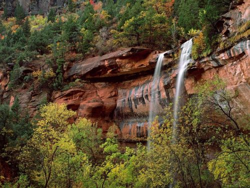 j-ordannn:  Emerald Pool Falls at Zion National Park.