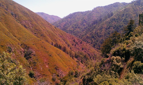 View from high up on Pine Ridge Trail in Big Sur, CA - I hiked 20 + miles to/from Sykes camp / hot springs there!