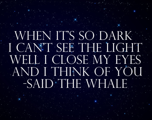 Said the Whale, The Light is You