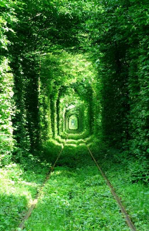 Tunnel of Love is located in Kleven, Ukraine