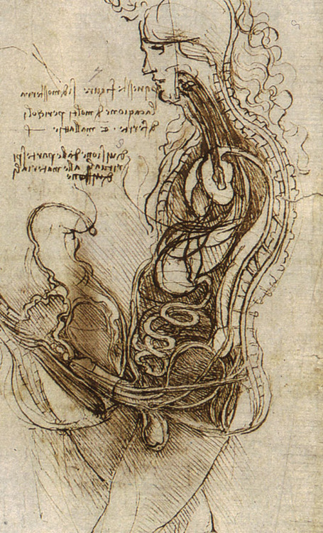 Leonardo da Vinci, Copulation, c. 1493, pen and ink.  The Royal Collection, London