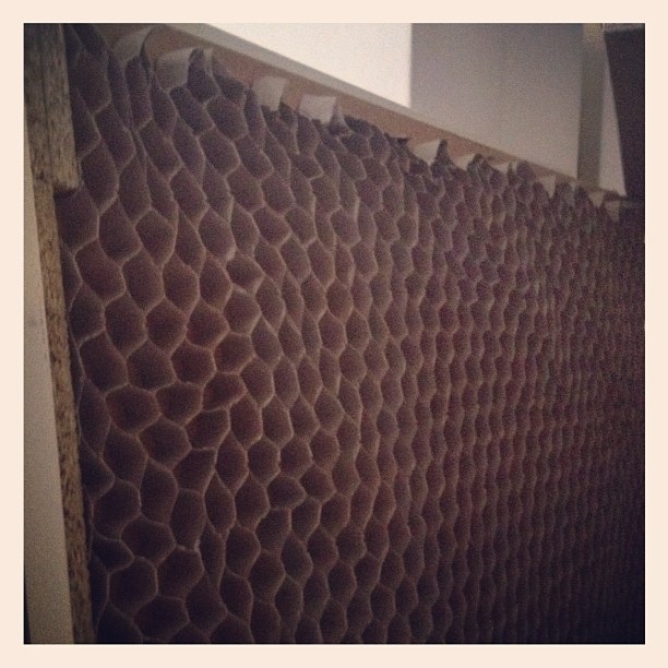 Cardboard honeycomb interiors of an Ikea bed - explosive Sunday