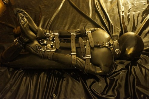 Me, hogtied in full latex. Bondage courtesy of Restriction