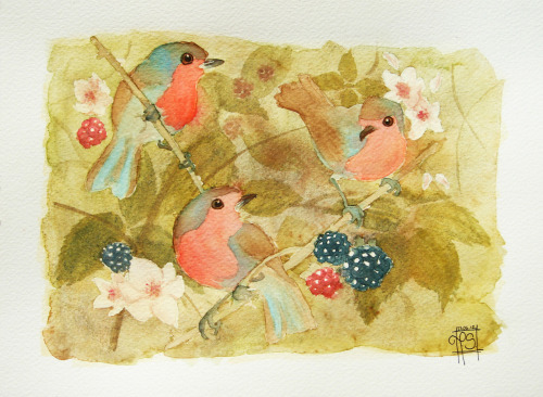 Robins and blackberries Watercolour on Canson paper. I can't find photos from painting process unfortunatelly :(