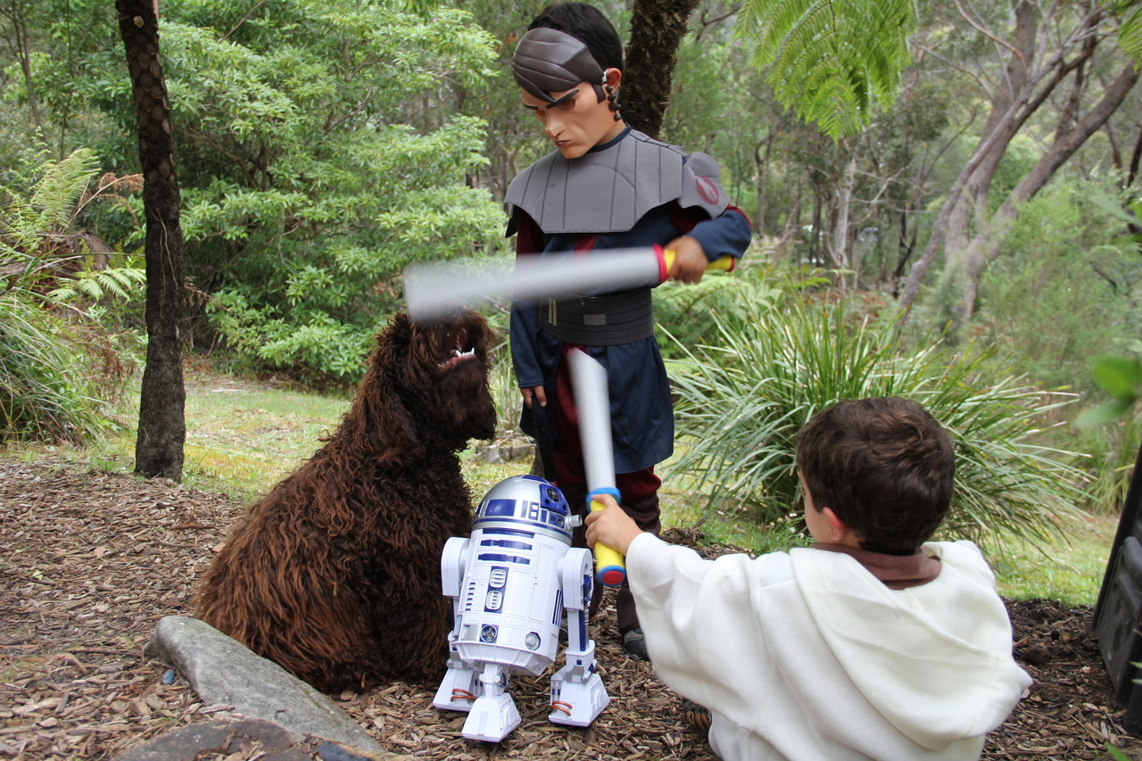 Master Cameroda protects a Wookie from Danikan Skywalker, while R2 looks on. Photos by Tym Lawrence