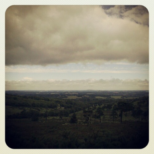 Walking in ashdown forest (Taken with Instagram)