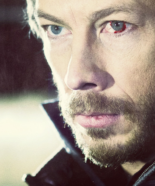 16/50 ♔ Images of Kris Holden-Ried