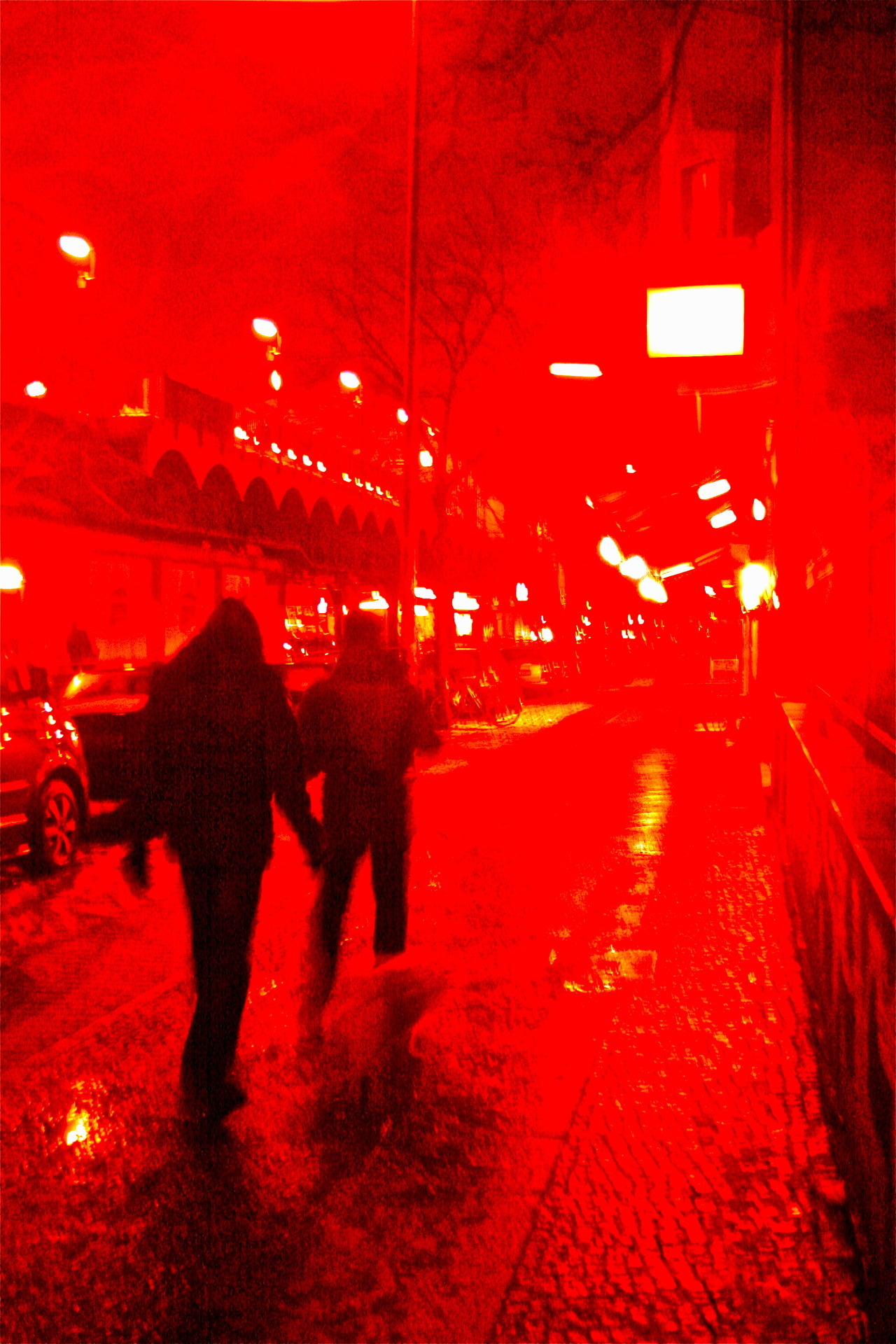 Rain Dogs , February 2012, in Berlin , photo by Fish Lily.