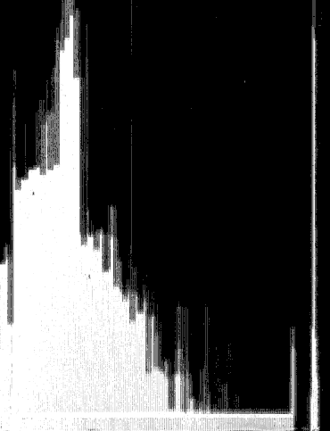 Scan lines (?). From the back matter of History of Wake County, North Carolina: With Sketches of Those who Have Most Influenced Its Development by Hope Summerell Chamberlain (1922). Original from the University of Wisconsin - Madison. Digitized April 4, 2012.