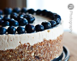 bakeddd:  raw blueberry lemon cheesecake (gluten-free, vegan) click here for recipe