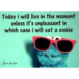 Oh Cookie Monster, you gluttonous genius!