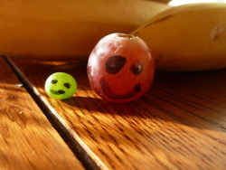 wall00nphobia:  found 2 grapes. OMFG there now so cute!