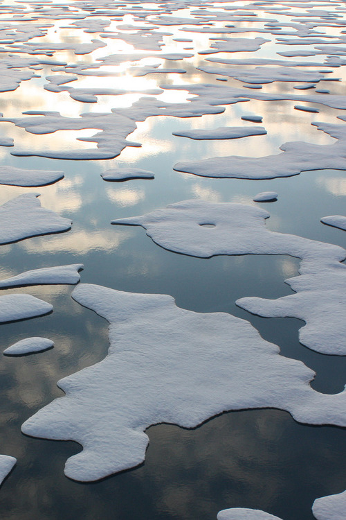 Sea Ice Patterns (by NASA)