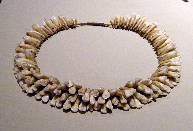 thedoppelganger:  Necklace strung with human teeth, Headhunters exhibit, Bowers Museum, Santa Ana, California.
