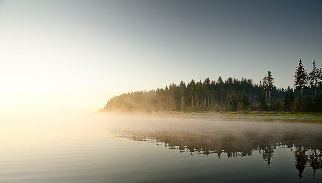 1iberated:  Early Morning Mist 2 by Meyer Felix on Flickr.