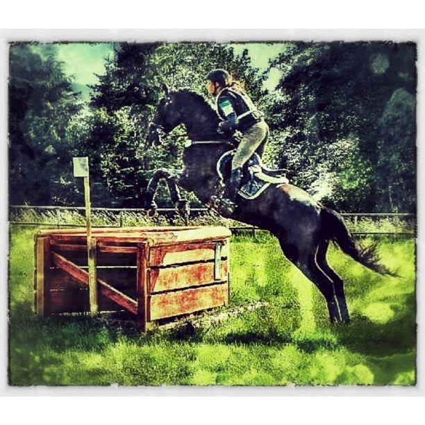 My totally cool daughter in the terrain, during the Danish Championship of Military horse-riding #proud #hardcore #dedicated #horses #military #dm #skanderborg #awesome #amazing #igers #igdaily #igaddict #instagramers #instagramhub #horseriding #family #best #myall (Taken with Instagram)
