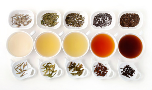 The Five Types of Tea (by Lin Pernille Photography)
