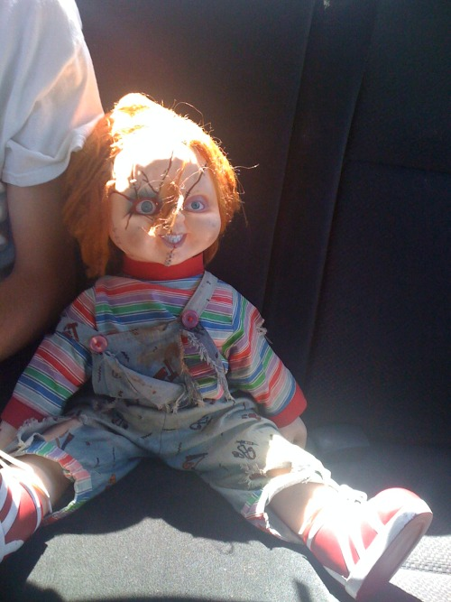 Chuckie came to kick it today. Chillin in the backseat. =)