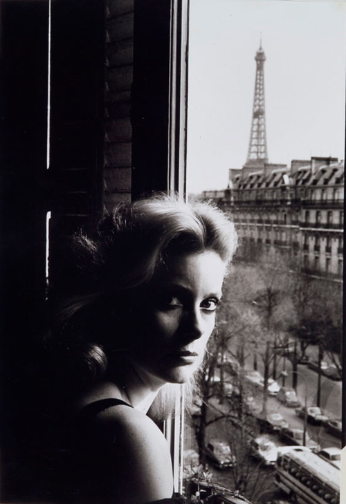 39 / 50 photos - Catherine Deneuve