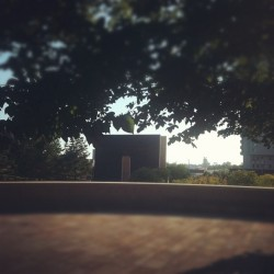 #okc  (Taken with Instagram at Oklahoma City National Memorial & Museum)