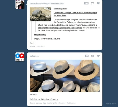 Tumblr: Helping keep things in perspective.