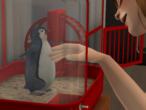 mrostrichbirdssims:  Got the penguin to be a fuctioning pet. I just  have some problems  to work out.