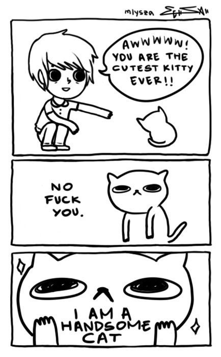 If I were a cat this is what I would say. This is also my reply when my friends say I am cute.