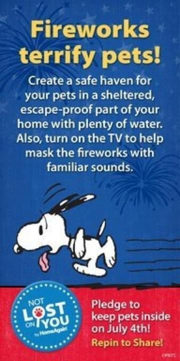 Please be considerate of your pets on July 4th