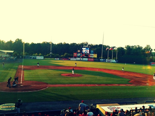 georgia-dream:  ROME BRAVES WHAADDUPP