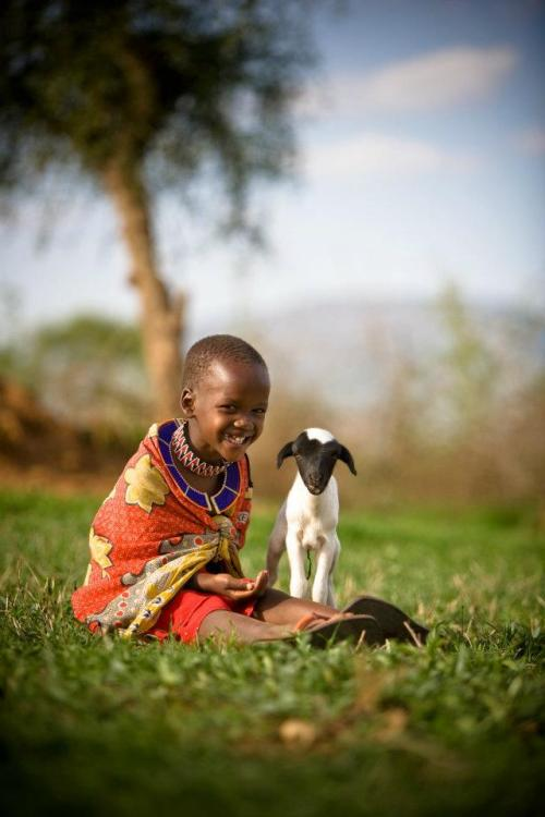 In Kenya, Namanyak, age 6, plays with a lamb, made possible through the World Vision Gift Catalog.Give a Gift today: http://bit.ly/wvgiftcatalog