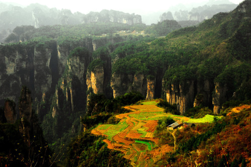wehaveamap:  National Park of Zhang Jia Jie, Hunan, China