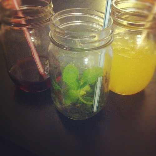 mason jar cocktails. #girlsnight (Taken with Instagram)