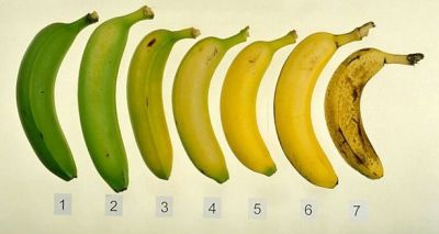 thecakebar:   How to Freeze Bananas (being Dominican this is like second nature to me LOL) It never fails. You buy a bunch of bananas while they still have some green, eat a couple, and the rest turn black and mushy before you get to them.  Before you throw away that banana, try freezing it. Black-skinned bananas, although soft and very sweet, are still good for a variety of uses in the kitchen.  Bananas with sugar spots can become chocolate covered treats on a stick, and green bananas can be fried to add a Caribbean flair to any meal.