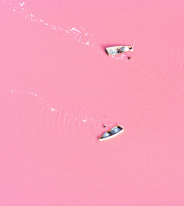 "Lake Retba in Senegal A boat floats on what looks like a huge strawberry milk-lake. The wooden vessels were photographed from the air bobbing on Lake Retba, in Senegal. From above the mass of water - which spans one square mile - looks staggeringly similar to a giant milkshake. And just like the Dead Sea swimmers are even able to FLOAT on the water with ease. The bizarre colour is caused by high levels of salt - with some areas containing up to 40% of the condiment. Michael Danson, an expert in extremophile bacteria from Bath University, said: ""The strawberry colour is produced by salt-loving organism Dunaliella salina. ""They produce a red pigment that absorbs and uses the energy of sunlight to create more energy, turning the water pink. ""Lakes like Retba and the Dead Sea, which have high salt concentrations, were once thought to be incompatible with life - hence the names. But they are very much alive."" Salt collectors can often be seen scouring the expanse to remove the valuable mineral - but first have to coat their skin with sheer butter. This helps protect their skin from exposure to the intense salt levels in the three metre deep lake. Salt crystals cling to the bodies of miners who work the lake everyday to extract its contents. And towering piles of collected salt litter the shoreline. Villagers then process it before selling and using the valuable mineral."